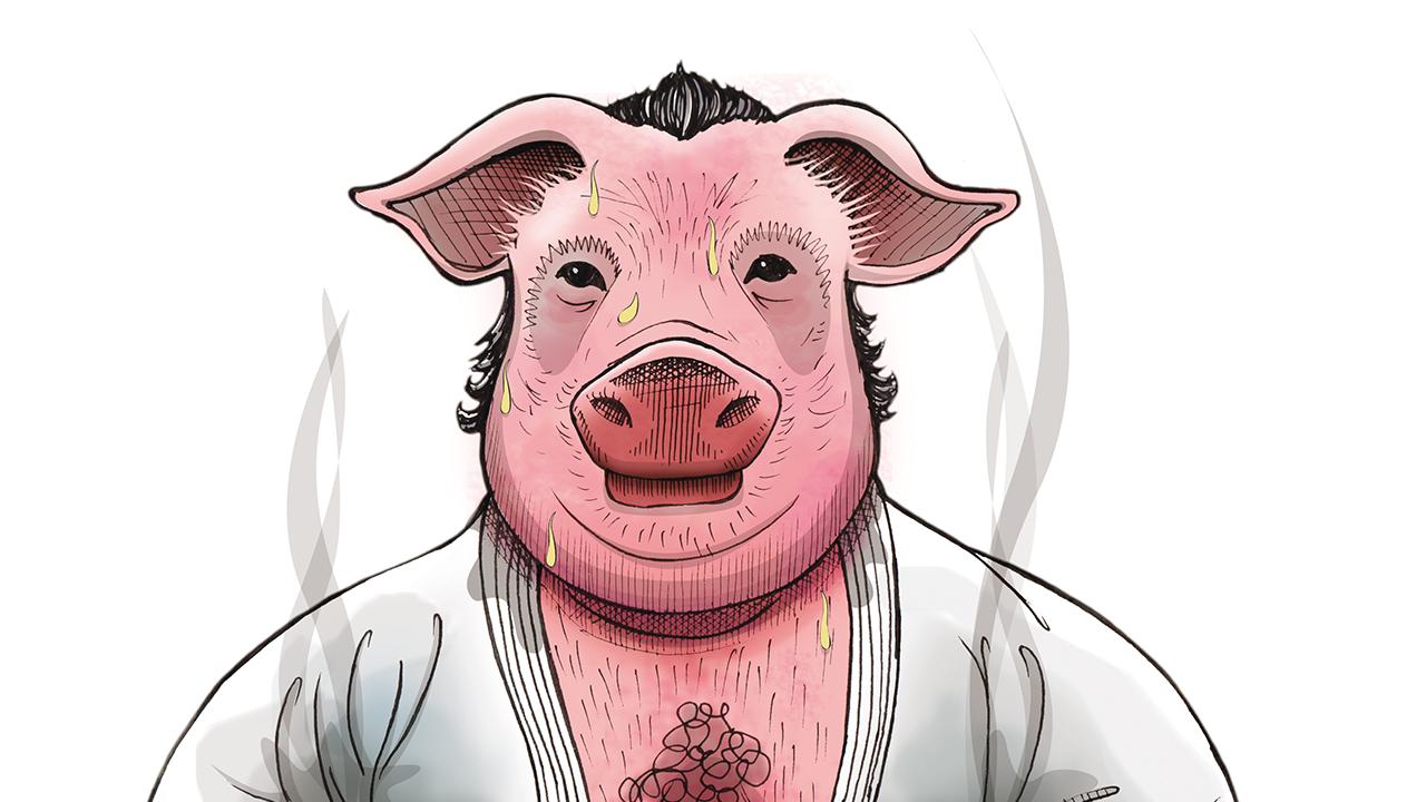 Ilustração - Porcão
